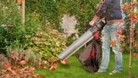 Odkurzacze ogrodowe do liści