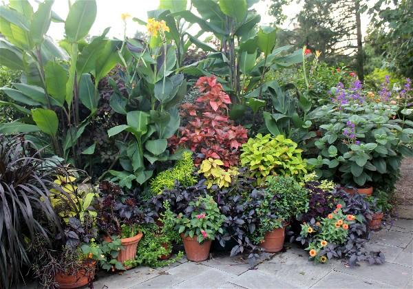 Donice ogrodowe idealnie komponują się z naszym ogródkiem. Pamiętajmy, żeby materiał wybierać pod kątem wytrzymałości, preferencji rośliny oraz przeznaczenia. Popularne są zwłaszcza doniczki drewniane, ceramiczne oraz plastikowe.