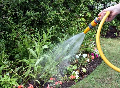Wąż ogrodowy wykonany z odpowiednich materiałów i wielu warstw zapewnia elastyczność oraz rozciągliwość. Zwracajmy uwagę na jego długość, a w przypadku potrzeby jego wydłużenia zawsze możemy skorzystać z szybkozłączek. Pistolet na końcu węża ogrodowego najlepiej sprawdza się przy podlewaniu konkretnych miejsc oraz pojedynczych skupisk roślin. Zapewnia precyzyjniejsze dawkowanie i pozwala na kontrolę strumienia wody.