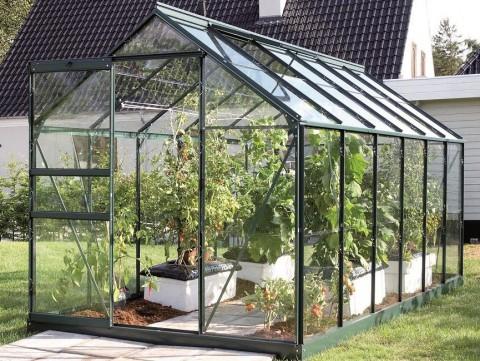 szklarnia ogrodowa ze szklanymi ściankami