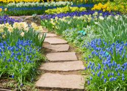 Ścieżki ogrodowe – z czego je wykonać?