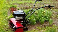 Glebogryzarki do ogrodu – wszystko co powinieneś o nich wiedzieć