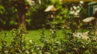 Wyposażamy nasz ogród w meble