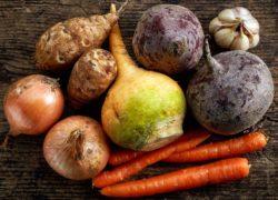 Warzywa korzeniowe – jesienne zbiory w warzywniku