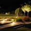 Wybieramy oświetlenie zewnętrzne i lampy ogrodowe. Jakie kupić i w jaki sposób rozmieścić? Aktualny ranking lamp oświetleniowych do ogrodu