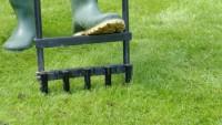Wybór wertykulatora do pielęgnacji trawnika. Zabieg wertykulacji i aeracji. Jakie modele można znaleźć w rankingu?