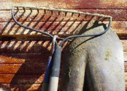 Narzędzia potrzebne w każdym ogrodzie