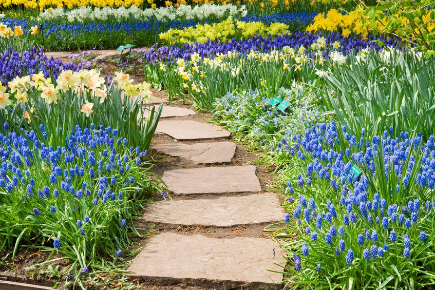 ścieżki ogrodowe - z czego je wykonać?