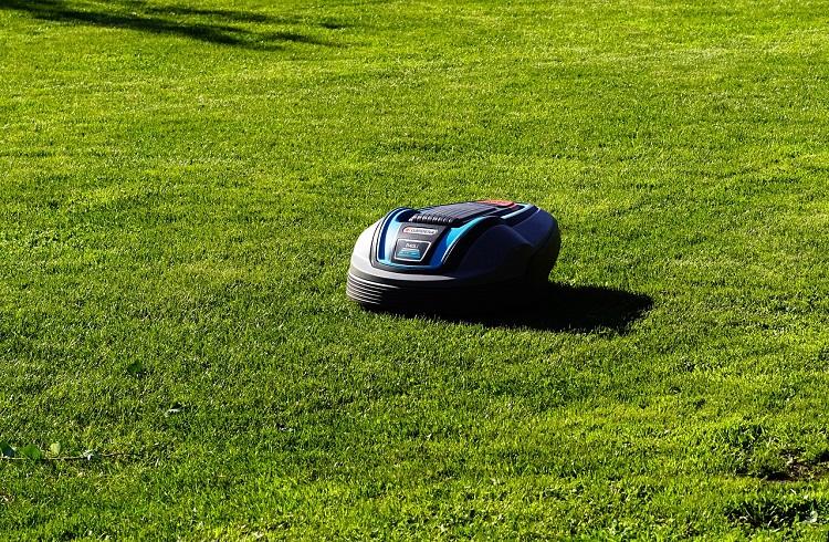 Jak wybrać robota koszącego do ogrodu?
